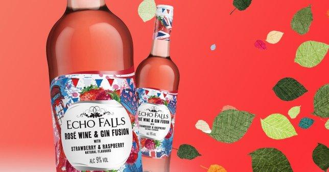 Echo Falls Rose Wine & Gin Fusion Strawberry & Raspberry